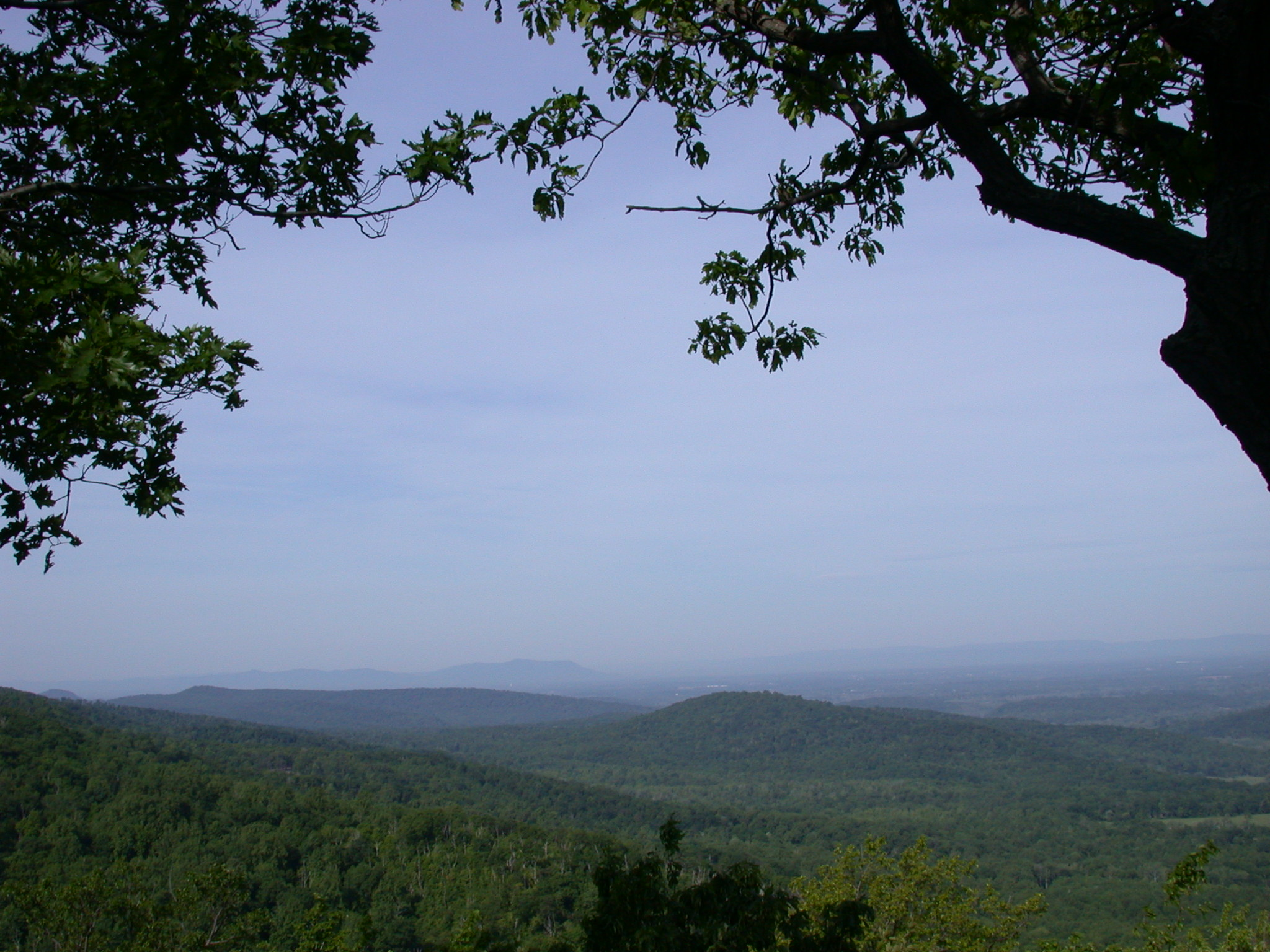 The Shenandoah Valley.